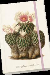 agenda-libro-note-fogli-bianchi-cactus-elastico-rosa-carta-cartone-blocco-notes-fogli-disegno